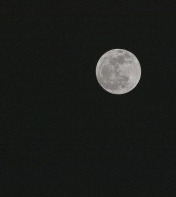 20140316 moon1.jpg