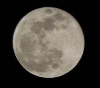 20190121 moon.jpg