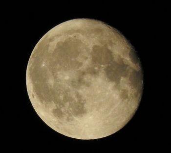 20190817 moon.jpg