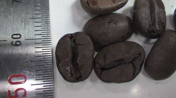 cafein less brajir 2.jpg