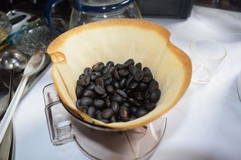 cofe syouchu after beans dry.jpg